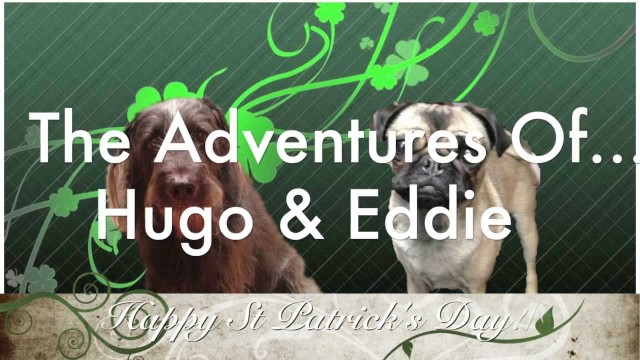 Hugo and Eddie Wishing You A Happy St Patrick's Day!