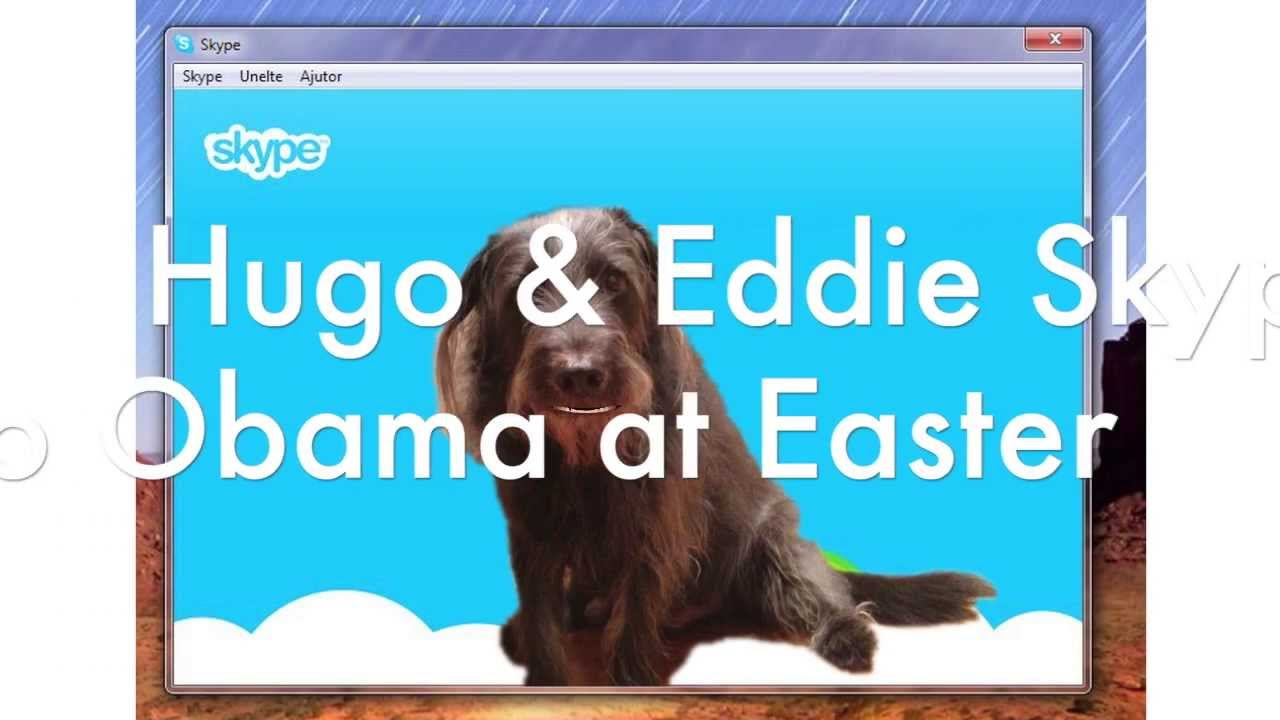 Hugo & Eddie Skype Bo Obama at Easter White House Dog Video