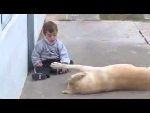 Dog and  Down Syndrome Boy