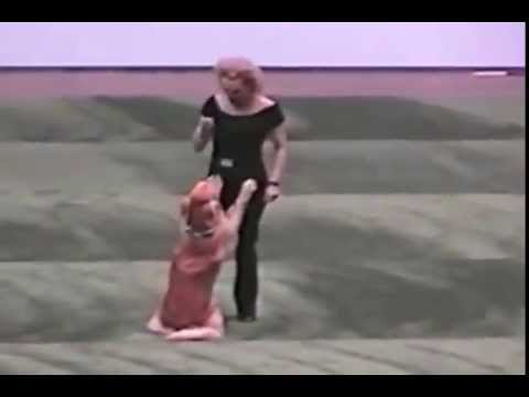 Dog & Partner Dance to the Musical Grease (video)