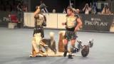 Dogdancing World Championship final, Salzburg 2012