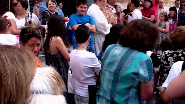 The Blessing of the Dogs, Positano Italy(video)